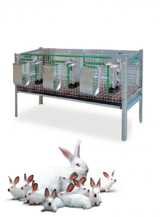 Gabbia conigli Belgio ingrasso Cm.120