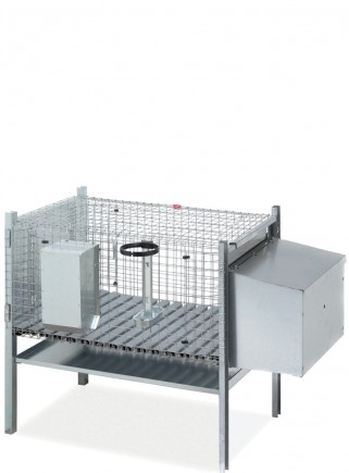 1 hatching rabbit cage Sicily model - 1