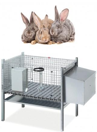 Cage rabbits mare 1 cave model Sicily