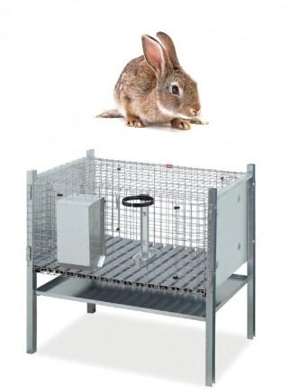 Gabbia coniglio maschio modello Sicilia - 2