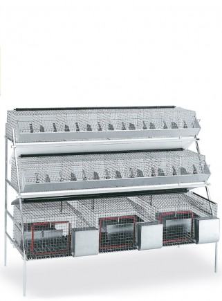 Mixed rabbit cage GM3 - 1