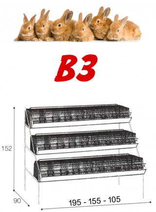 Gabbia conigli ingrasso B3