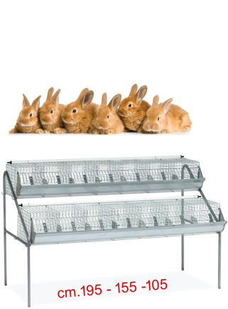 Cage for fattening rabbits B2 - 1