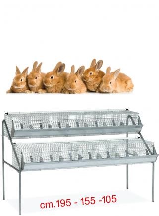 Gabbia conigli ingrasso B2 - 1
