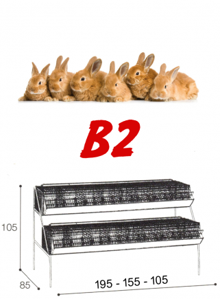 Gabbia conigli ingrasso B2