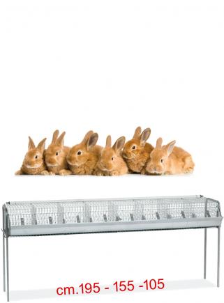 Gabbia conigli ingrasso B1 - 1