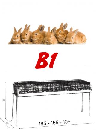 Gabbia conigli ingrasso B1