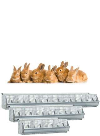 Cage for fattening rabbits BASKET - 1