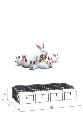 Cage rabbits mares 4N basket