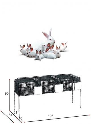 Gabbia conigli fattrici F3 Bis