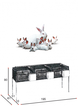 Rabbit cage for mares F3
