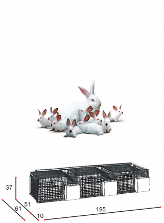 Cage rabbits mares 3N basket