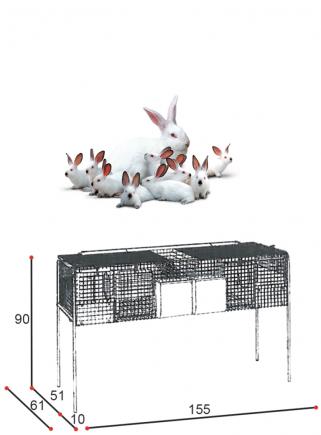 Gabbia conigli fattrici F1