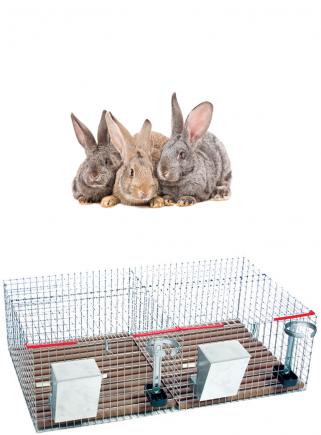 Gabbia conigli cesto 2 box - 1