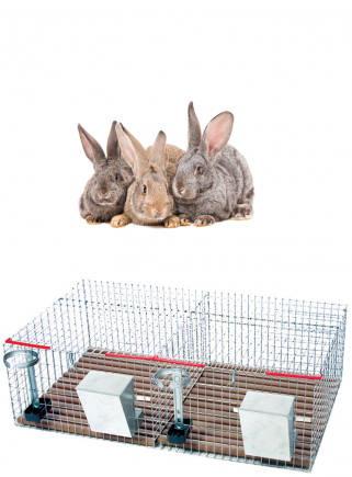 Cage for weaning rabbits 2 boxes