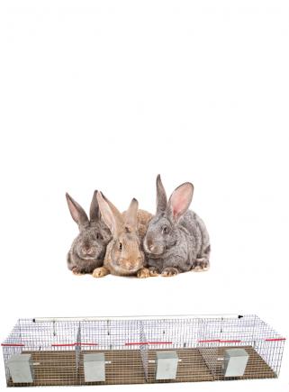 Gabbia conigli cesto 4 box - 1