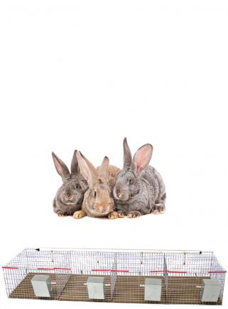 Gabbia conigli cesto 4 box