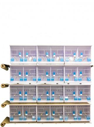 Batteria EVOLUTION 3100 a parete - 12 gabbie - 1