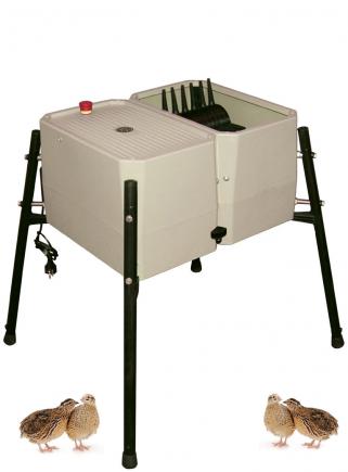 Esterina plucking machine in ABS 24 fingers for quails - 1