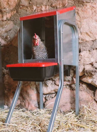 Chicken nest 1 compartment and supports PLATIN - 5