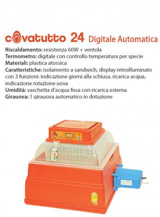 Incubatrice covatutto 24 DIGITALE automatica - 2