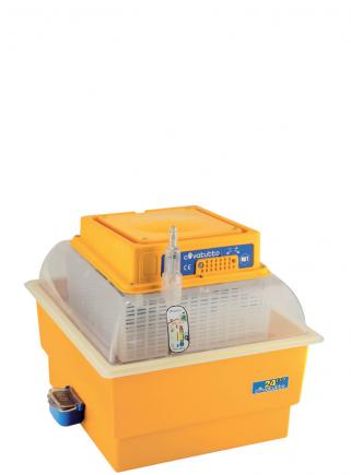 Analog 24 ECO incubator - 1