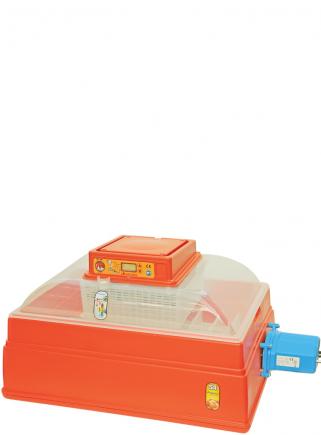 Incubatrice 54 digitale automatico - 1