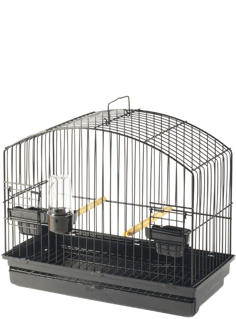 STA display cage BORDER - 1