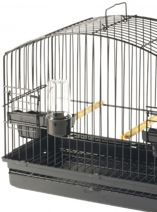 STA display cage BORDER - 2