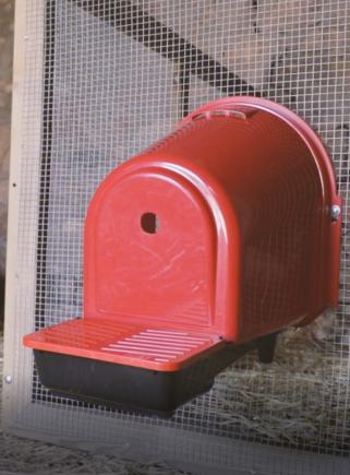 Nido per galline 1 foro in plastica per esterno gabbia - 6