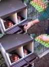 Nido per galline 1 scomparto e sostegni - 2