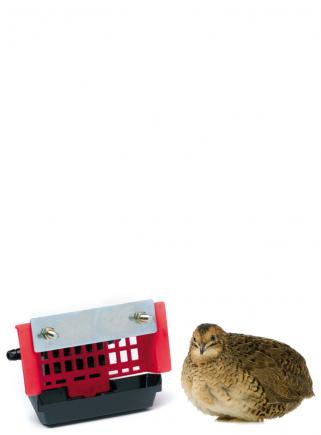 Automatic bowl quail drinker