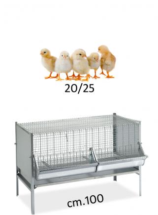 Gabbia polli/pulcini cm.100x50 - 1