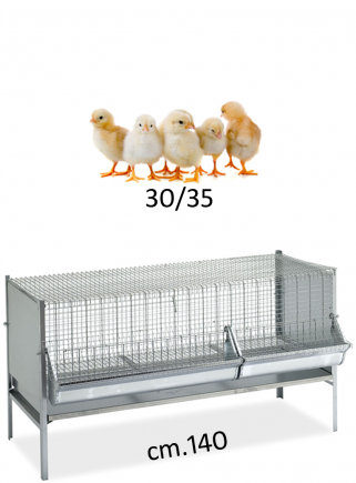 Cage P3 for weaning chickens 140 cm - 1