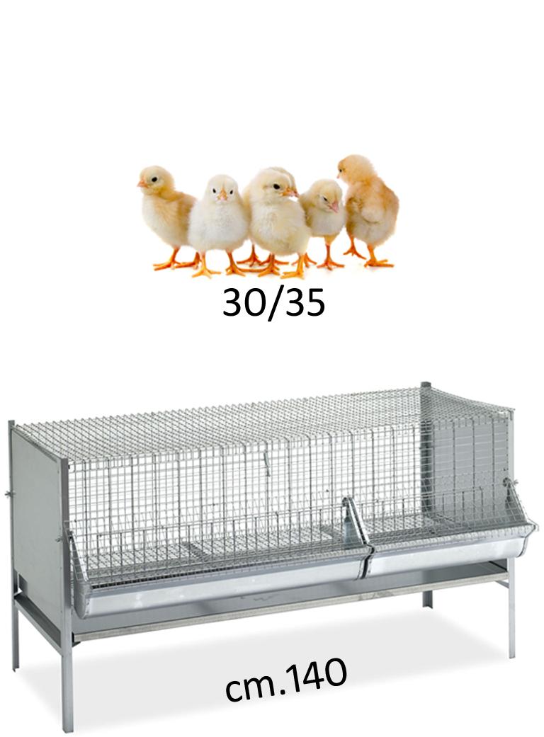 Gabbia polli/pulcini cm.140x50 - 1