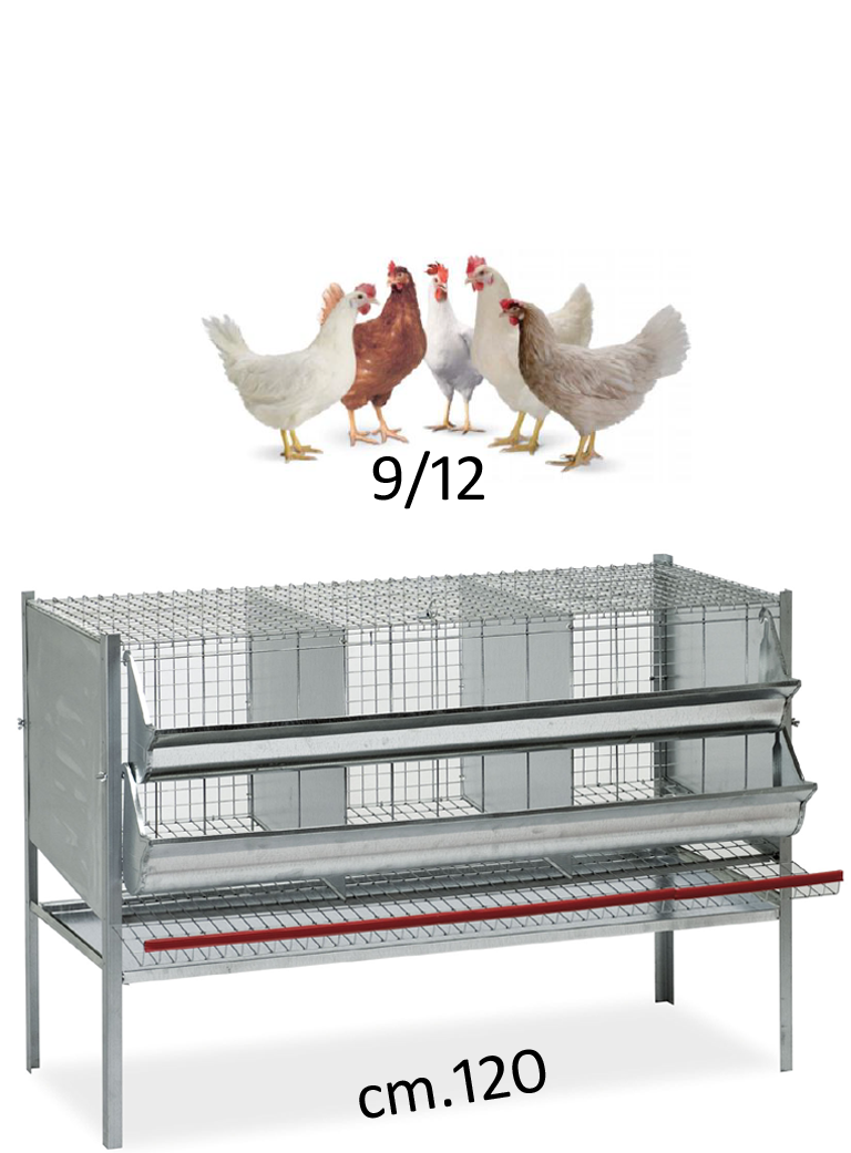 Gabbia galline cm.120 - 1