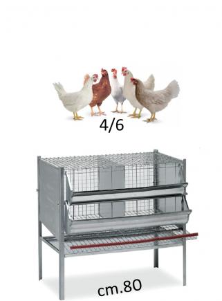 Gabbia galline cm.80 - 1