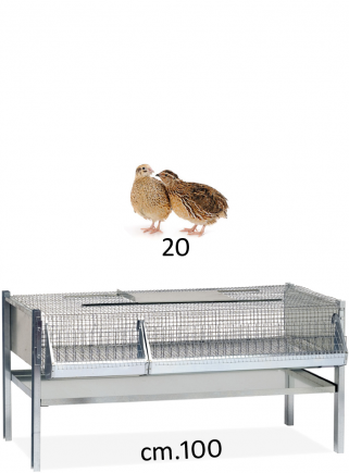 Cage for fattening quails 100 - 1 cm