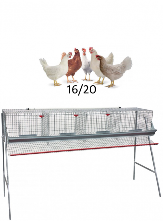 Chicken cage floors 1 - 1
