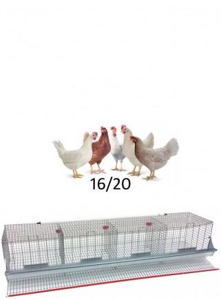 Gabbia cesto galline cm.210 - 1