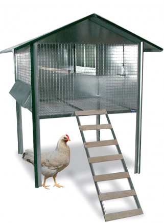 Outdoor chicken coop for laying hens - 1