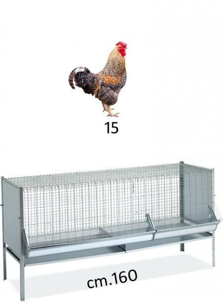 Gabbia capponi/polli/pulcini cm.160x60 - 1