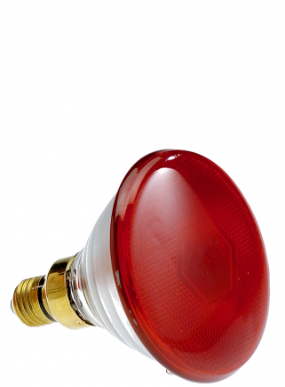 Philips infrared lamp 175 W PAR38