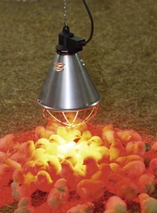 Aluminum reflector 21 cm diameter with 2.5 m cable and 150 Watt lamp - 3