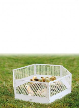 Recinto in plastica per pulcini. cuccioli, piccoli animali