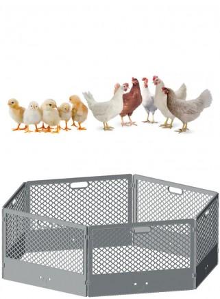 Recinto in plastica per pulcini. cuccioli, piccoli animali - 1