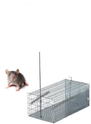 Trappola topi a galleria piccola cm.20