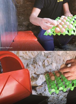 Contenitore in plastica 30 uova