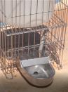 Abbeveratoio a livello costante in alluminio per cani con supporto e serbatoio da lt.8 - 2