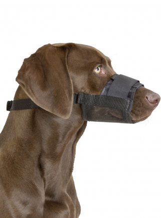 Muzzle in adjustable nylon fabric LARGE - 1